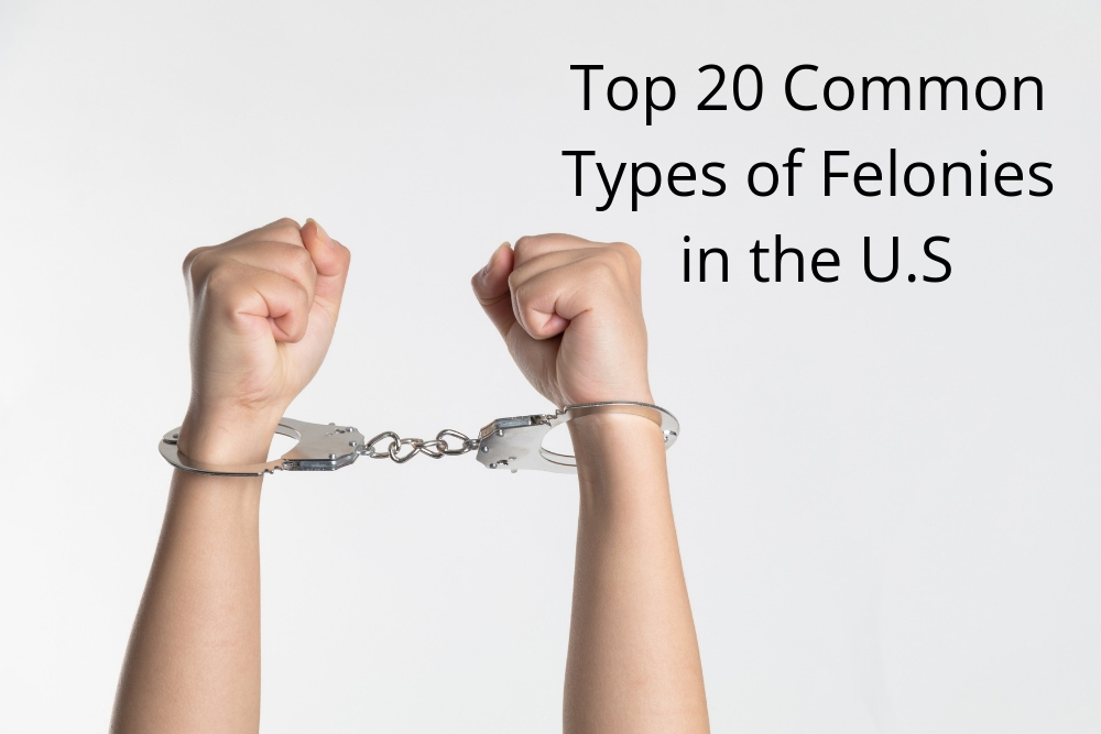 Top 20 Common Types of Felonies in the U.S